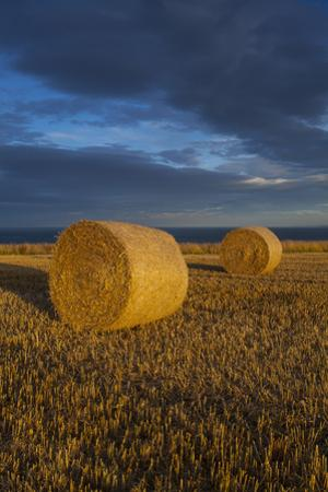 Bale of Hay and Storm Clouds, Scarborough, North Yorkshire, Yorkshire, Yorkshire and the Humber, En