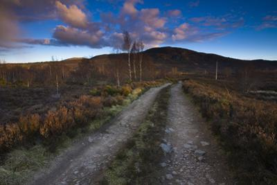 Dirt Road through Moorland, Cairngorms National Park, Scottish Highlands, Scotland