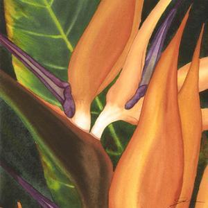 Bird of Paradise Tile I by Jason Higby