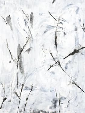 Whispers of Grey by Jason Jarava