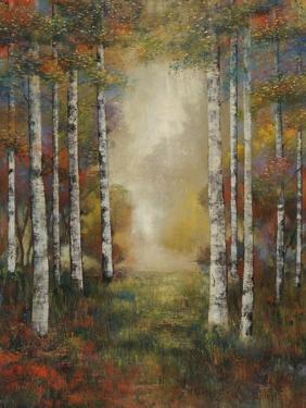 Through the Trees I by Jason Javara