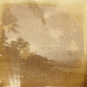 Hali'a Aloha VI by Jason Johnson