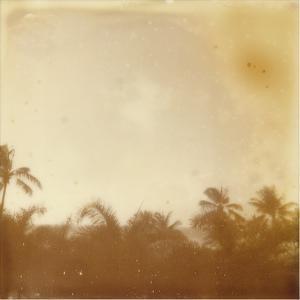 Hali'a Aloha VII by Jason Johnson