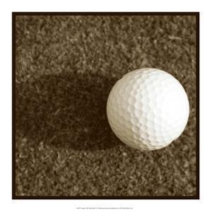 Sepia Golf Ball Study IV by Jason Johnson