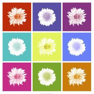 Vivid Bouquet by Jason Johnson