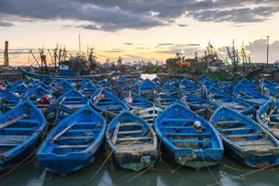 Blue boats in the old fishing port at sunset, Essaouira, Marrakesh-Safi, Morocco, North Africa, Afr by Jason Langley