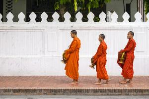 Buddhist Novice Monks Line Up to Receive Alms (Tak Bat) at Dawn, Luang Prabang by Jason Langley