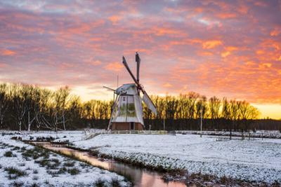 Witte Molen (White Mill) Dutch windmill in winter at sunset, Harn, Groningen, North Holland, Nether by Jason Langley
