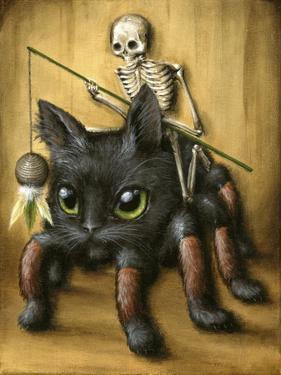 Catantula by Jason Limon