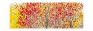 Trees by Jason Matias