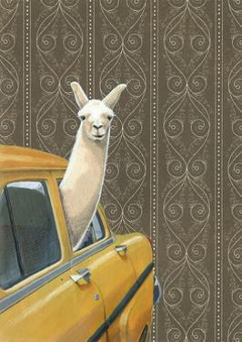 Taxi Llama by Jason Ratliff