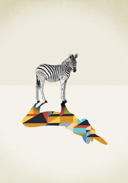Zebra - Walking Shadows by Jason Ratliff