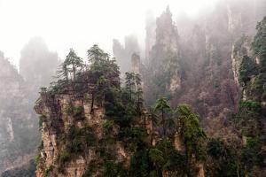 Foggy Zhangjiajie by JasonYU