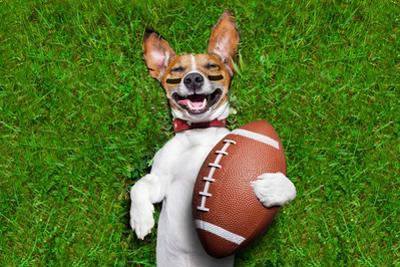 American Football Dog by Javier Brosch