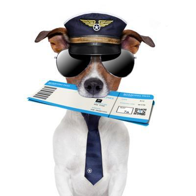 Boarding Pass Dog by Javier Brosch