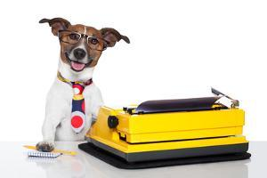 Business Dog Typewriter by Javier Brosch