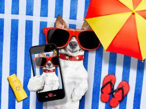 Dog Selfie from Vacation by Javier Brosch