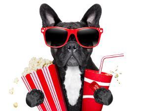 Dog to the Movies by Javier Brosch