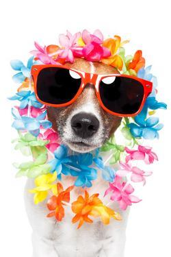 Funny Dog Hawaiian Lei And Sunglasses by Javier Brosch