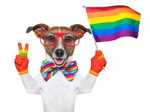 Gay Pride Dog by Javier Brosch