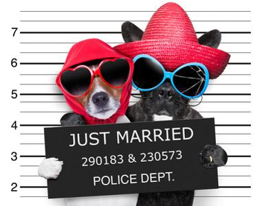 Just Married Mugshot by Javier Brosch