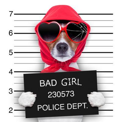 Mugshot Lady Dog by Javier Brosch