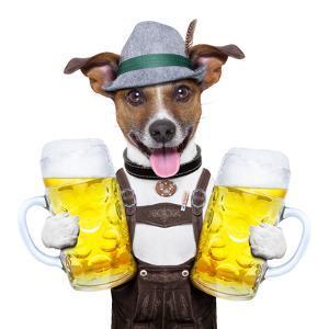 Oktoberfest Dog by Javier Brosch