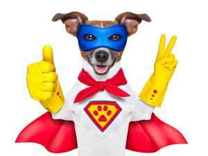 Super Hero Dog by Javier Brosch