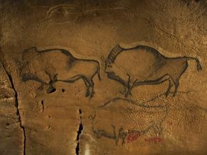 Stone-age Cave Paintings, Asturias, Spain by Javier Trueba