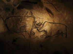 Stone-age Cave Paintings, Chauvet, France by Javier Trueba