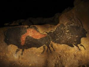 Stone-age Cave Paintings, Lascaux, France by Javier Trueba