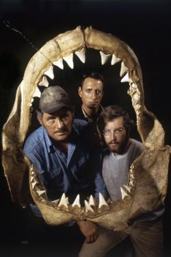 Jaws, Robert Shaw, Roy Scheider, Richard Dreyfuss, Directed by Steven Spielberg, 1975