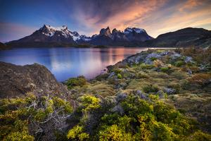 Chile, Magallanes Region, Torres Del Paine National Park, Lago Pehoe, Landscape, Dawn by Jay Goodrich