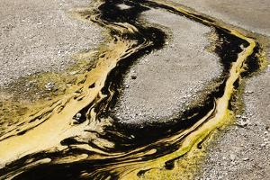 Multiple Colors and Patterns of Geyser Bacteria in Yellowstone National Park, Wyoming by Jay Goodrich