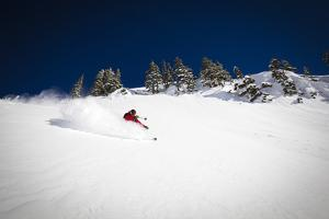 Skier Makes Some Powder Turns In The Backcountry Near Mt Baker Ski Area by Jay Goodrich