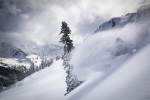 Skier Makes Some Steep Angle Powder Turns In Cascades Of Washington As A Snow Storm Begins To Clear by Jay Goodrich