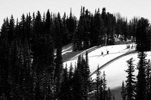 Skiers Hike A Ridgeline In The Jackson Wyoming Backcountry To Practice For The Powder 8 Competition by Jay Goodrich