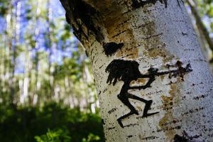 The Kokopelli Figure Carved On An Aspen Tree In The Forest Near Moab, Utah by Jay Goodrich