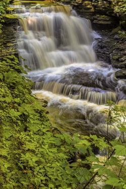 Pennsylvania, Benton, Ricketts Glen SP. Delaware Falls Cascade by Jay O'brien