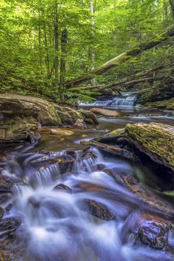 Pennsylvania, Benton, Ricketts Glen State Park. Kitchen Creek Cascade by Jay O'brien