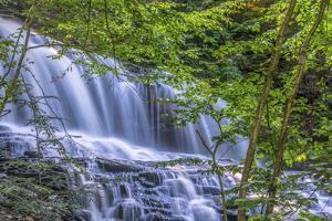 Pennsylvania, Benton, Ricketts Glen State Park. Mohawk Falls Cascade by Jay O'brien