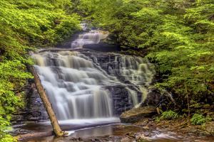 Pennsylvania, Benton, Ricketts Glen State Park. Mohican Falls Cascade by Jay O'brien