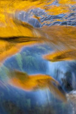 USA, New York, Adirondack Mountains. Flowing Water on Raquette Lake by Jay O'brien