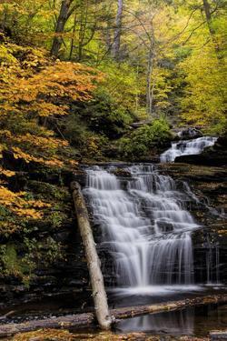USA, Pennsylvania, Benton. Waterfall in Ricketts Glen State Park by Jay O'brien