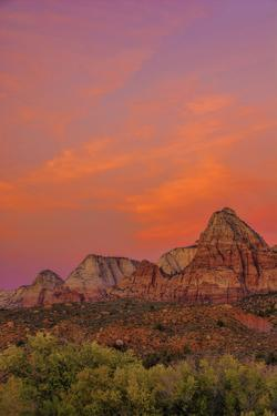 USA, Utah, Zion National Park. Mountain Landscape by Jay O'brien