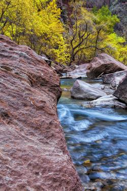 USA, Utah, Zion National Park. Stream in Autumn Landscape by Jay O'brien