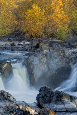 USA, Virginia, Mclean. Stream in Great Falls State Park by Jay O'brien