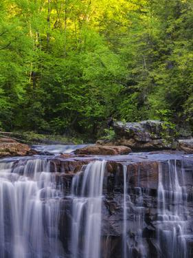 USA, West Virginia, Davis, Blackwater Falls. Scenic of the falls. by Jay O'brien