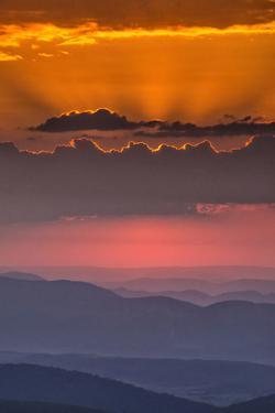 USA, West Virginia, Davis. Sunrise on Dolly Sods Wilderness Area. by Jay O'brien