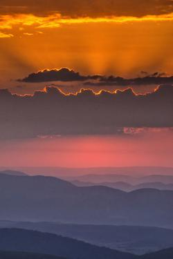 USA, West Virginia, Davis. Sunrise on Dolly Sods Wilderness Area. by Jay O'brien
